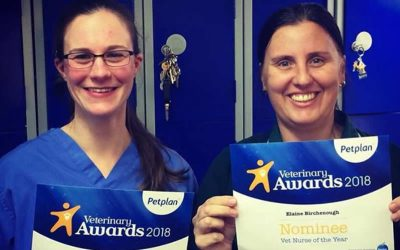 Well done to our nurses!